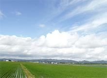 栗山町風景