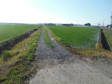 farm_pic-11